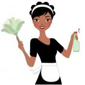 Services Domestiques (14)