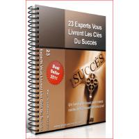 23 experts vous livrent les cles du succes en webmarketing
