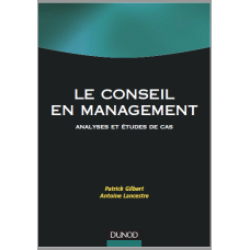 Le Conseil En Management