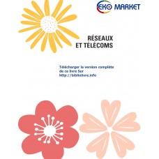 Reseau Et Telecom