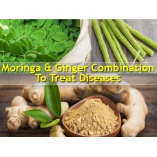 GINGER AND MORINGA