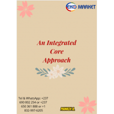 An Integrated Core Approach Lower and Upper six