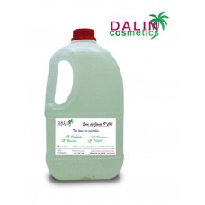 BLEACH - DALIN COSMETICS 2L - DAC-10-EJ02