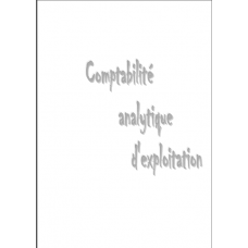 Comptabilite analytique d exploitation