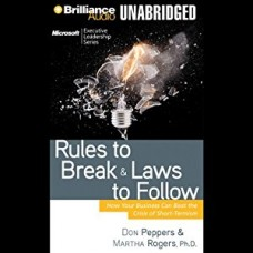 Rules to Break and Laws to Follow: How Your Business Can Beat the Crisis