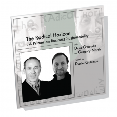 The Radical Horizon: A Primer on Business Sustainability
