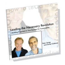 Leading the Necessary Revolution: Building Alignment in Your Business for Sustainability